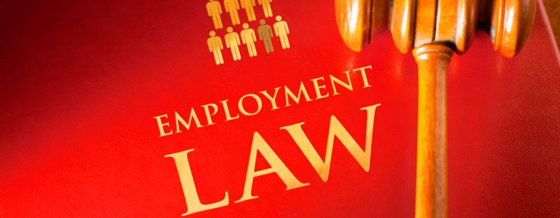 Employment Law tampa
